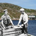 Battle Harbour Historic Trust operates a restored fishing community - stay and explore