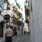 part of village surrounding castle