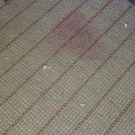 Stained Carpet..trash left after room was cleaned