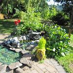 The relaxing garden