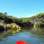 Canoe and wine tours booked through our office