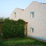 Bilde fra Azienda Il Gelso