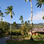 L'hôtel est au pied du parc du morne seychellois
