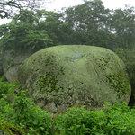Una de las muchas rocas