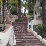 """""""The Steps"""""""