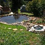 le bassin d'Eric au Valombré...
