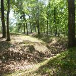 earthen mound/trenches