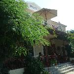 'Irida' and our balcony