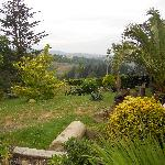 Grounds surrounding hotel and countryside plus sea view