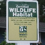 We are a Certified Wildlife Habitat