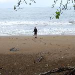 une plage sauvage