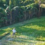 Rice farmer view from our balcony