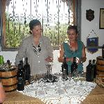 Wine and oil tasting at the vineyard
