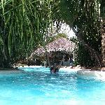 la piscine, superbe