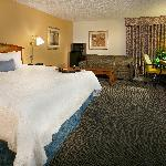 Foto de Hampton Inn Metairie
