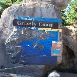 Russia's Grizzly Coast, one of our favorite exhibits.