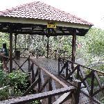 Natural sauna