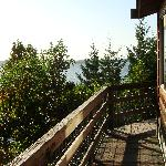 """View from the deck of the """"Tree House"""""""