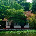 Close to Nature... Overlooking the backwaters...