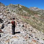 carrareccia alpina