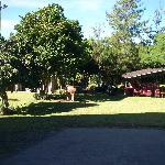 Hotel area 1
