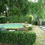 """Jardín y """"piscina"""""""