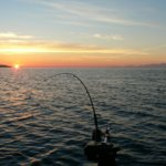 D and D Fishing Charters