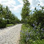 I vialetti del villaggio
