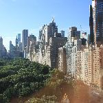 Vue Central Park