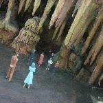 close up of cave diorama
