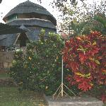 The Lodge at Hornbill
