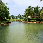 lake in the hotel