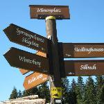 Walking signpost