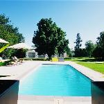 bloomestate pool area