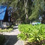 bungalow beach front