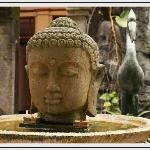 Guest Photo - Buddha Pond