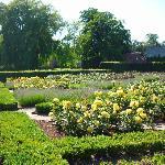 Los jardines dedicados a la Reina Caroline (33090477)