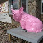 Look for the pink pig!