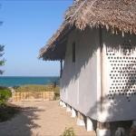 Book the Turtle Chalet directly on the beach.