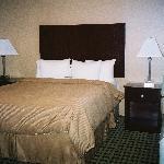Separate Queen Room