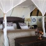 Dog House - open suites with ultimate luxury