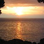 alba al seaview
