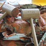 Crabs Rule