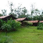 the other cabins on the property