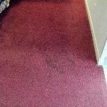 Dirty carpet