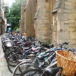 Bikes of Cambridge