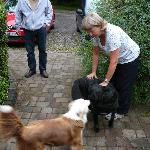 Trish and a couple of her rescued dogs.