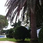 piscina-jardin a 50 metros carretera