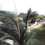 """8.-Barra Da Lagoa- """"Pousada Recanto Da Barra"""":  vista desde el 2º piso"""