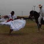 Caballos de paso peruanos y marinera